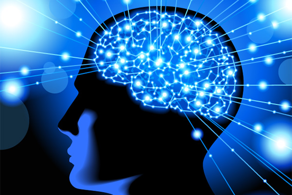what-to-look-for-in-nutraceuticals-for-dandy-brain-health